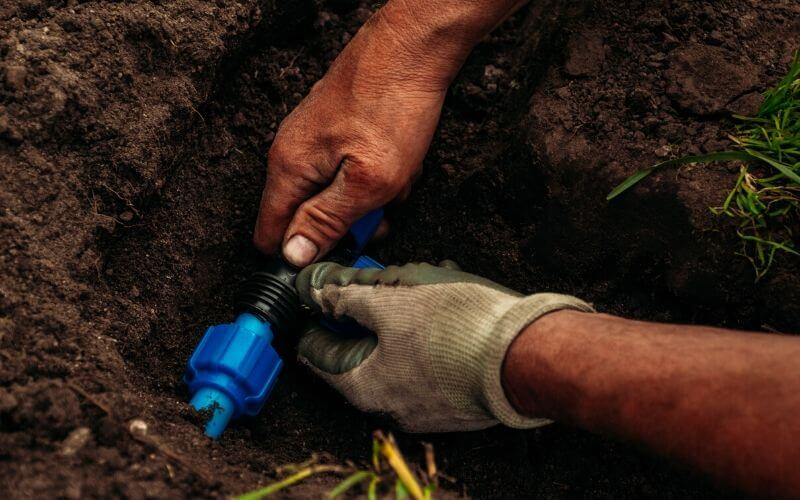 drip irrigation system in tomato field